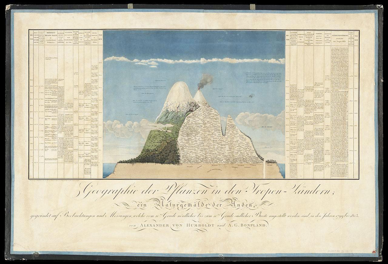 Alexande von Humboldt, Abbildung aus Ideen zu einer Geographie der Pflanzen nebst einem Naturgemälde der Tropenländer, Paris 1805.