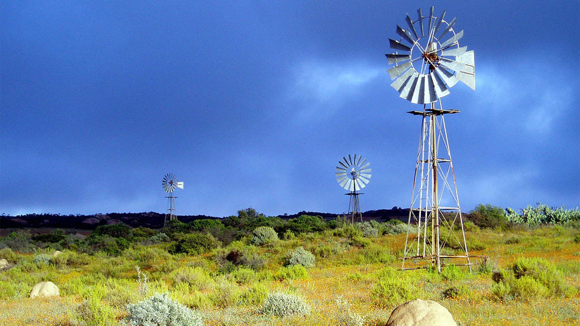 Das Chicago – die legendären Windräder der Aermotor Windmill Company Chicago auf Fuerteventura.