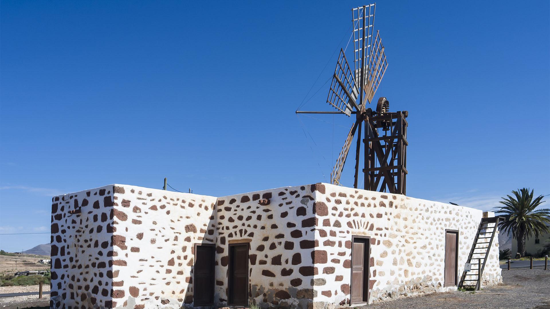 Windmühlen – wurden erst spät auf Fuerteventura genutzt.