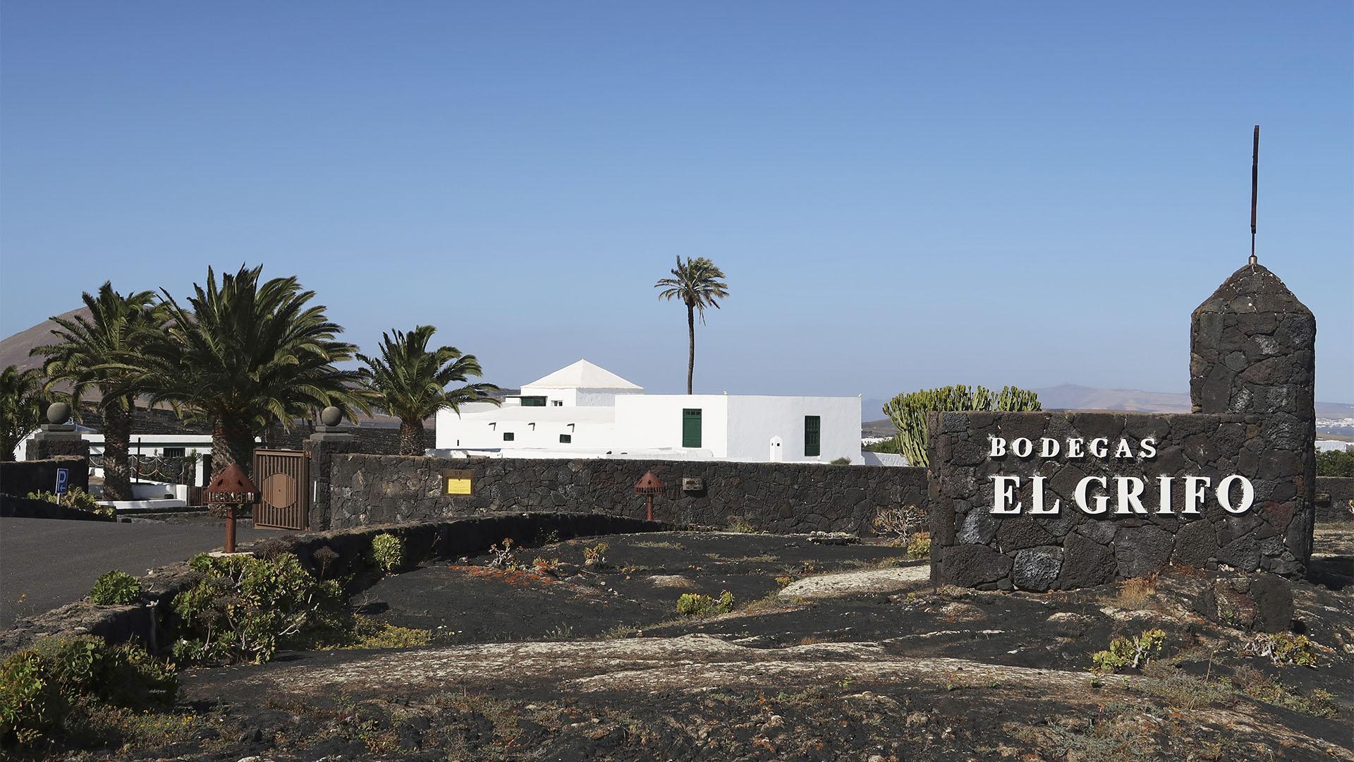 Bodega El Grifo auf Lanzarote.