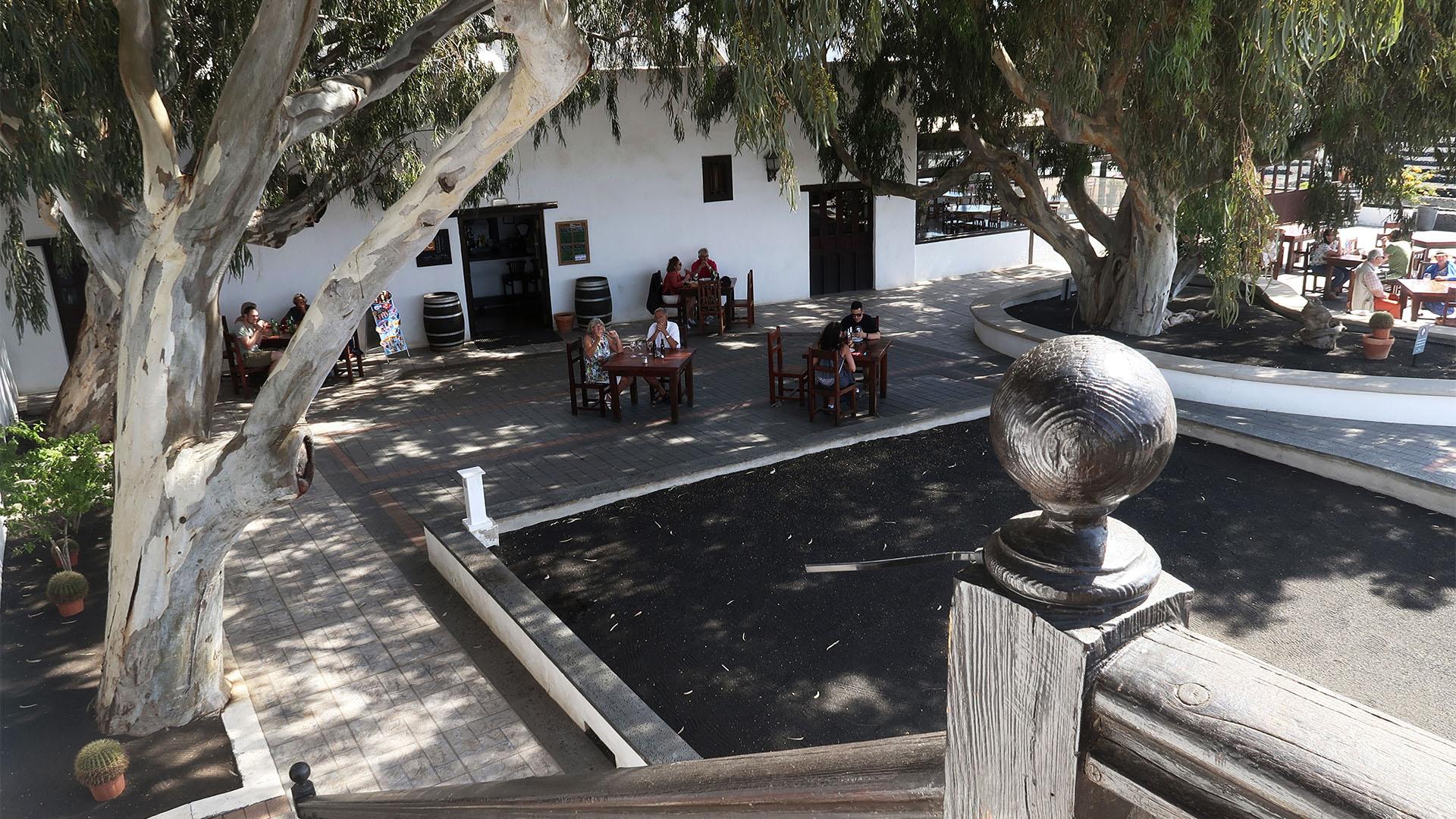 Bodega Rubicón Lanzarote.