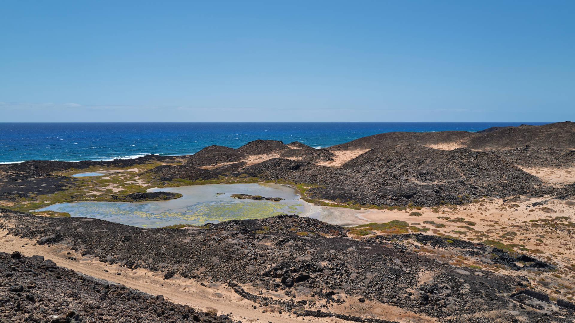 Bajo de la Perra Isla de Lobos Fuerteventura.