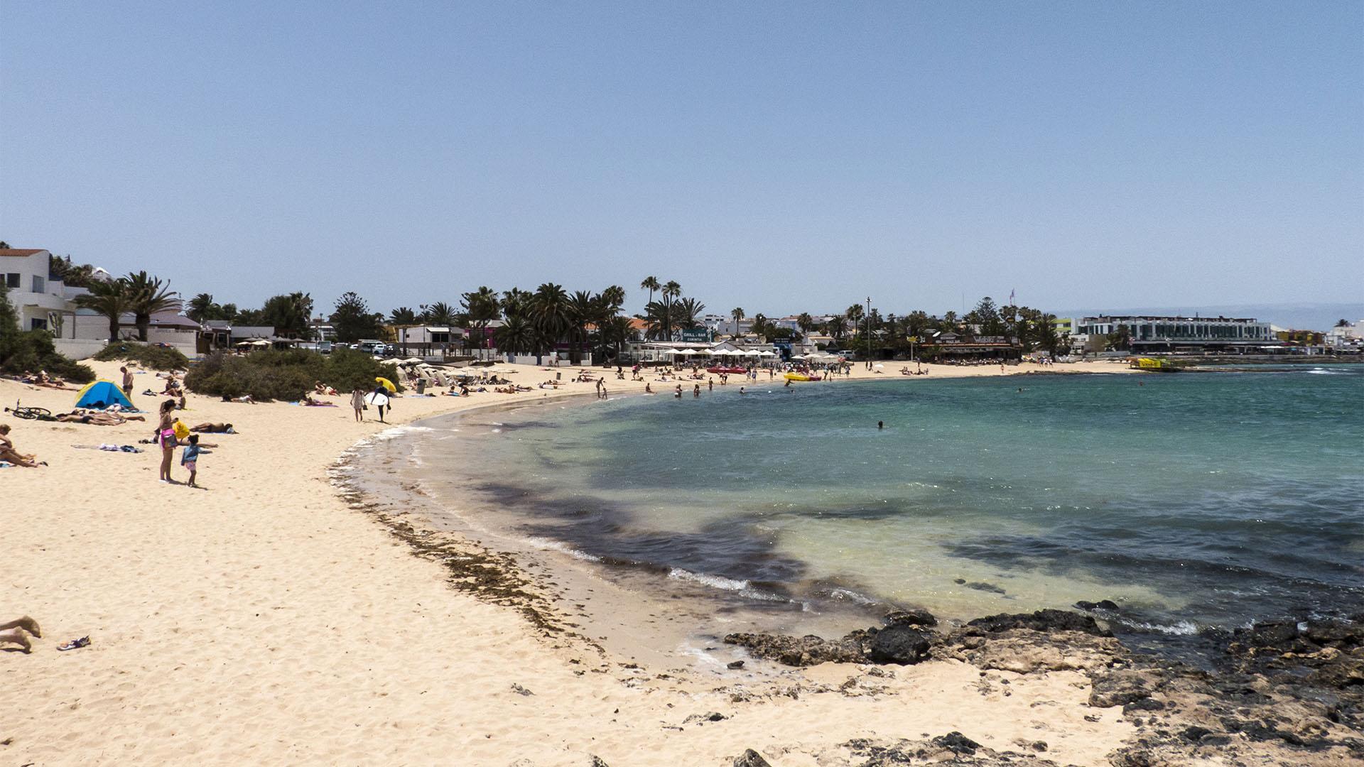 Die Strände Fuerteventuras: Playa de Corralejo – Viejo Playa de los Verilitos