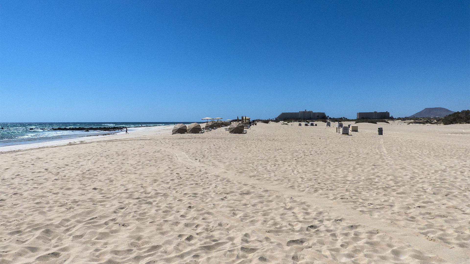 Die Strände Fuerteventuras: Playa del Viejo