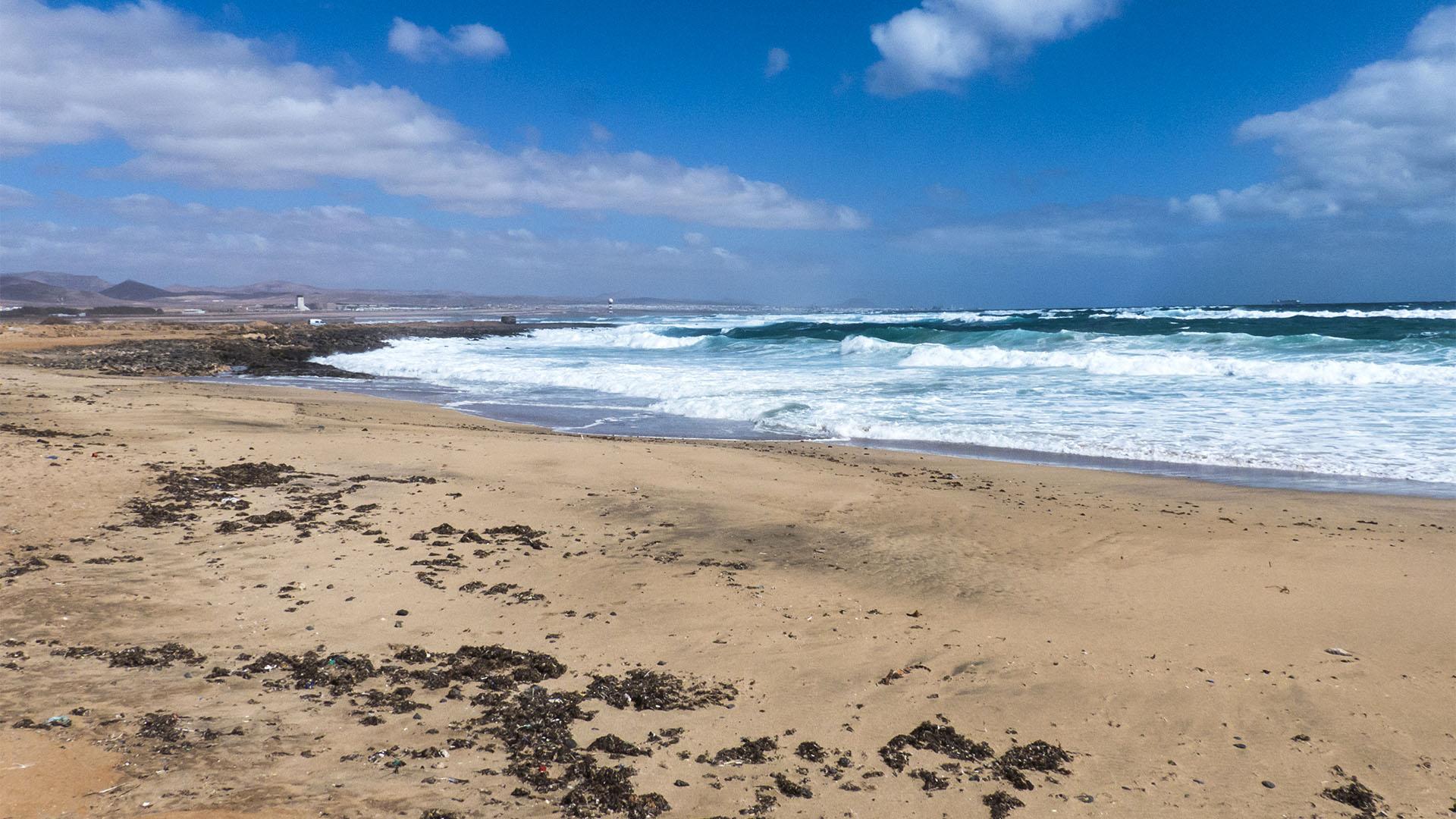 Die Strände Fuerteventuras: Playa de Matorral