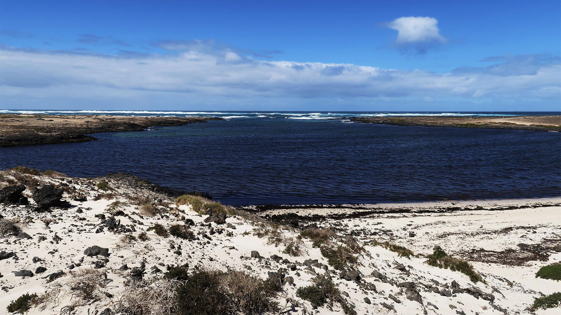 Die Strände im Norden von Fuerteventura – Northshore Caleta de Beatriz.