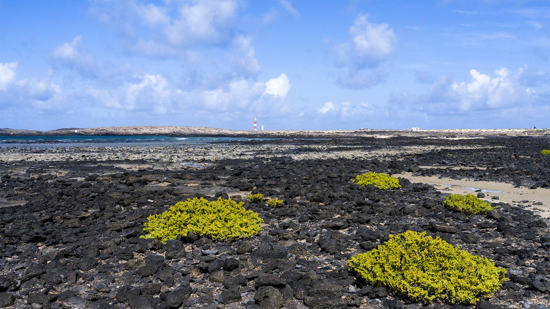 Die Strände Fuerteventuras: Caleta del Rio