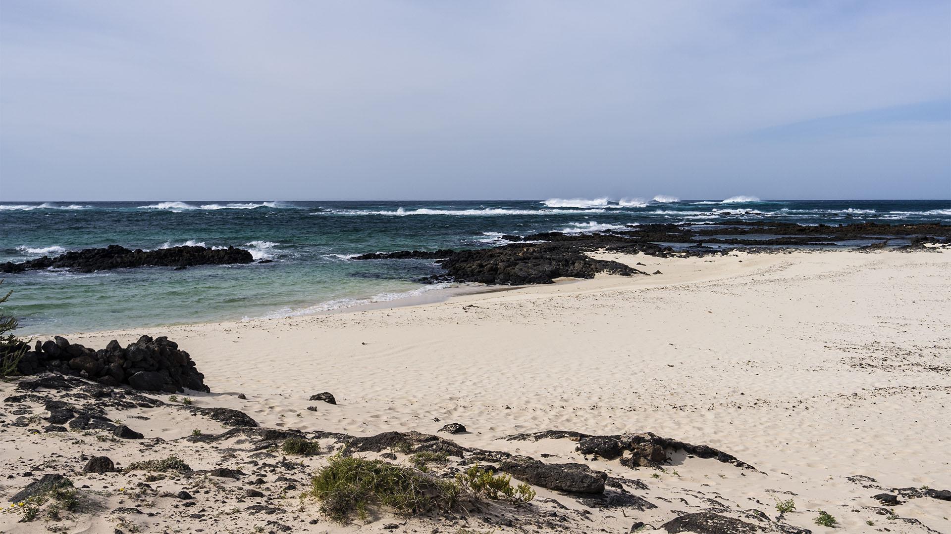 Die Strände Fuerteventuras: Paso pelado