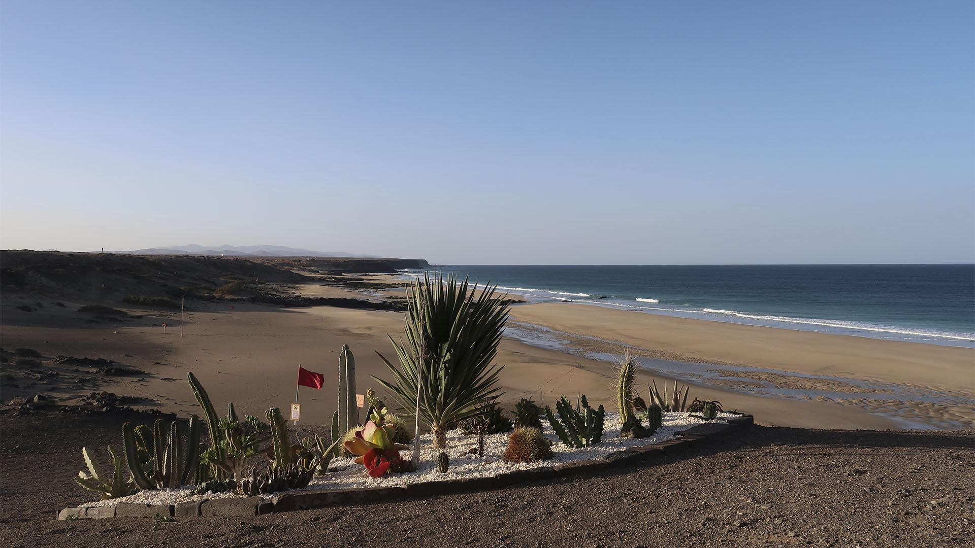 Der Playa del Castillo aka Piedra Playa El Cotillo Fuerteventura.