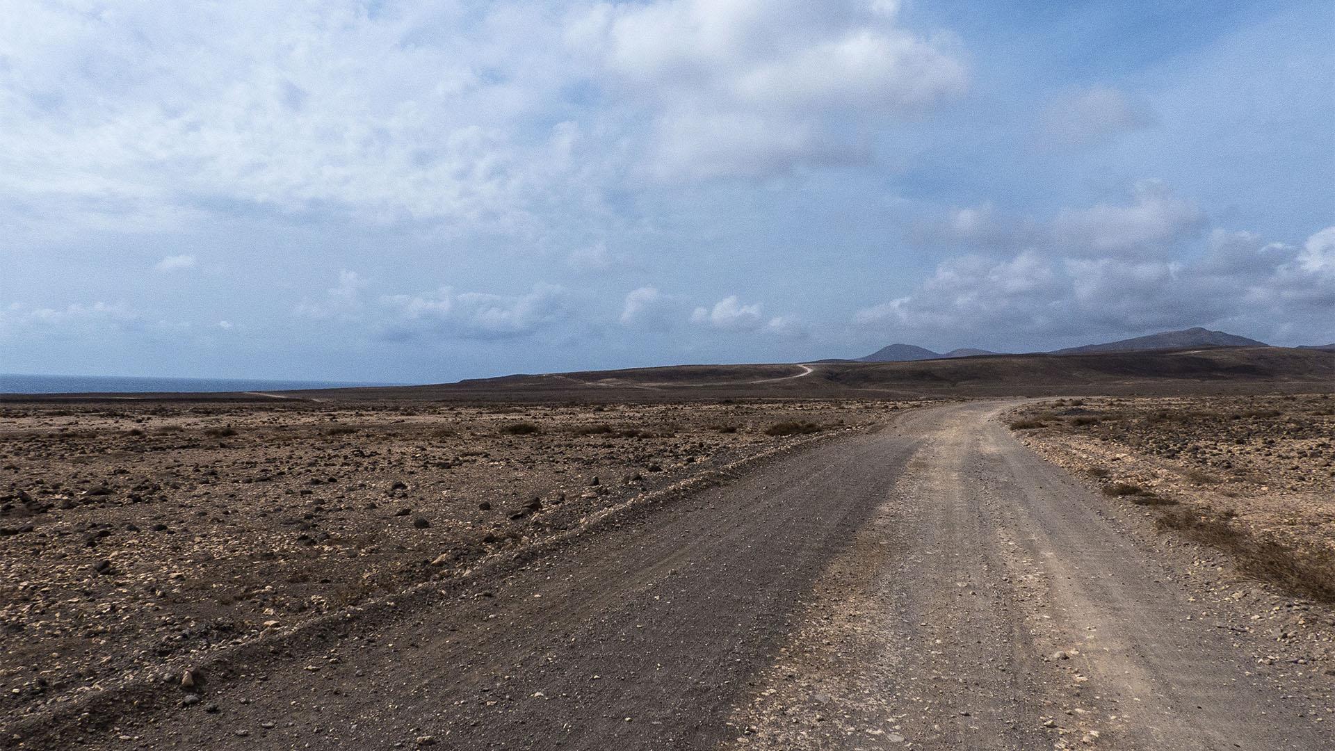 Die Strände Fuerteventuras: Caleta de la Ballena