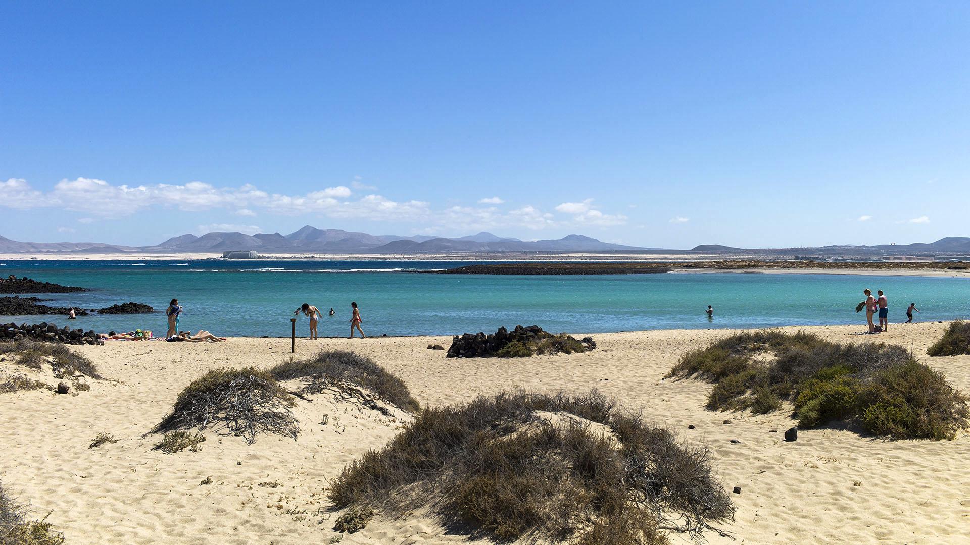 Fuerteventura entdecken – die kleine Insel Los Lobos vor Fuerteventura.