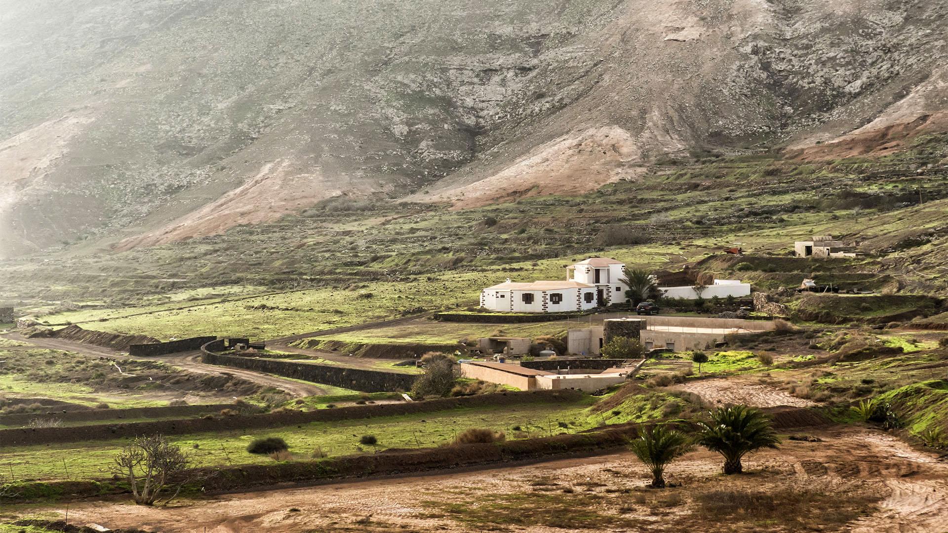 Sehenswürdigkeiten Fuerteventuras: Vallebrón – Mirador de Vallebrón y Fuente la Palma
