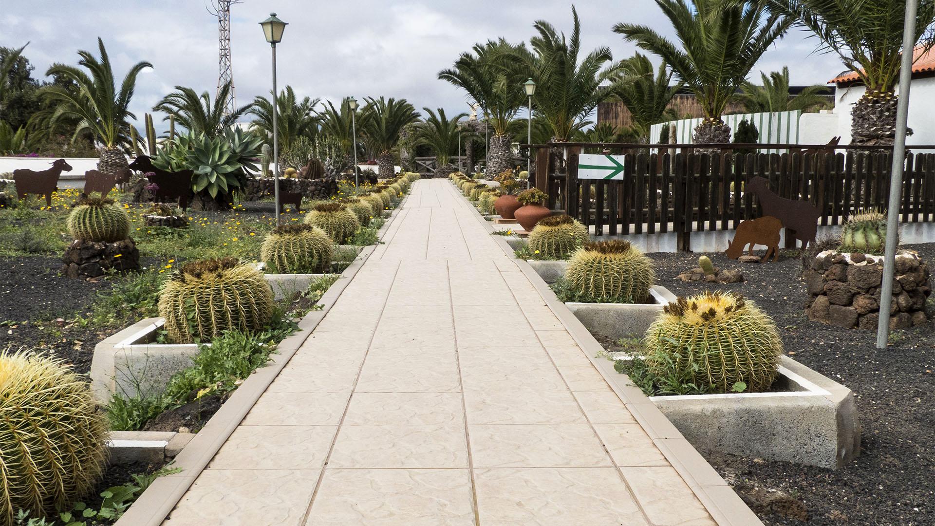 Sehenswürdigkeiten Fuerteventuras: La Oliva – Casa Mané