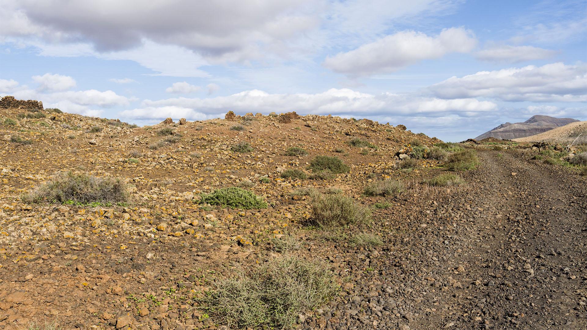 Sehenswürdigkeiten Fuerteventuras: Tiscamanita – Caldera de Gairía