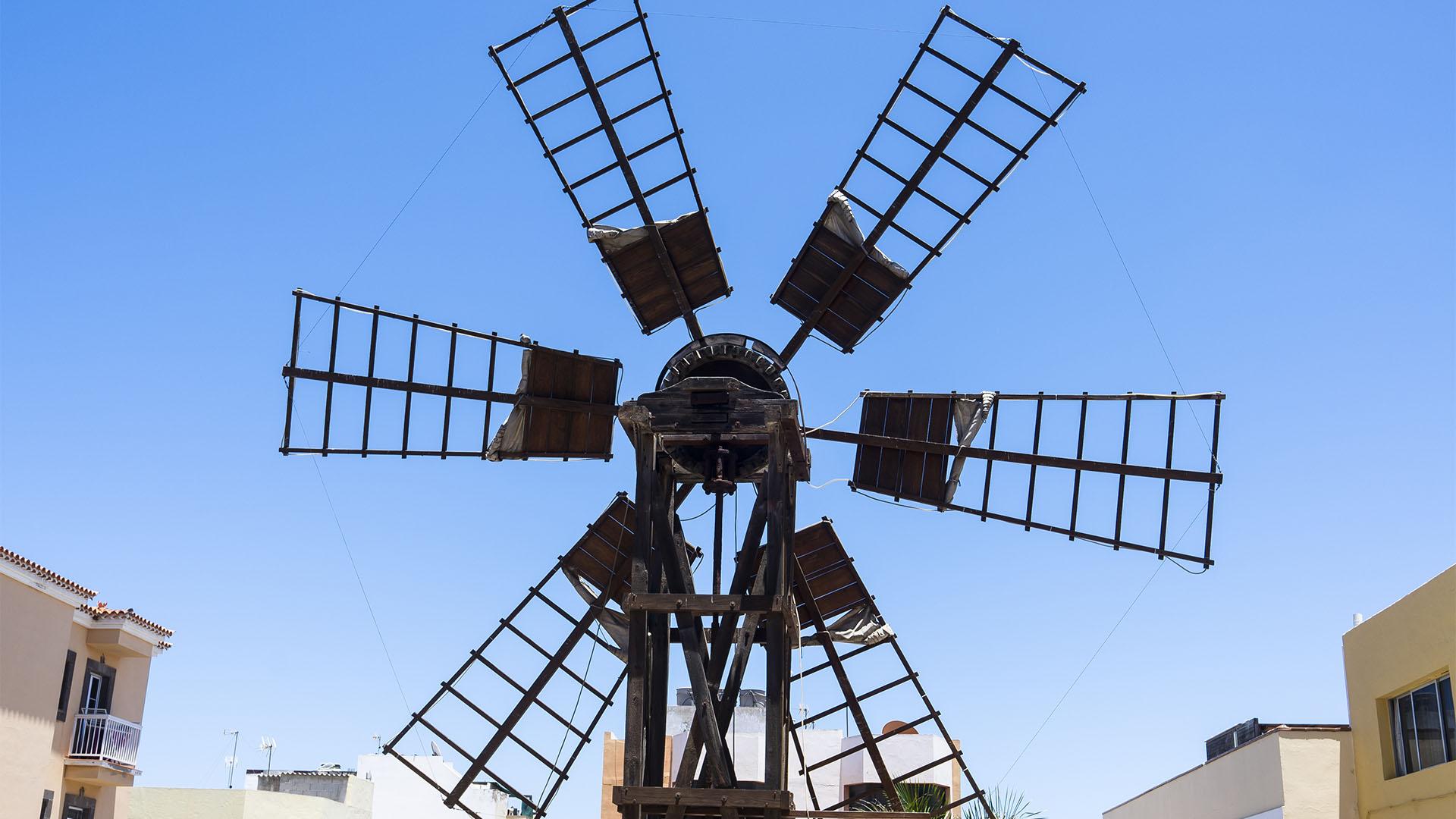 Die Windmühlen von Corralejo Fuerteventura: Molina de Manolo Hierro