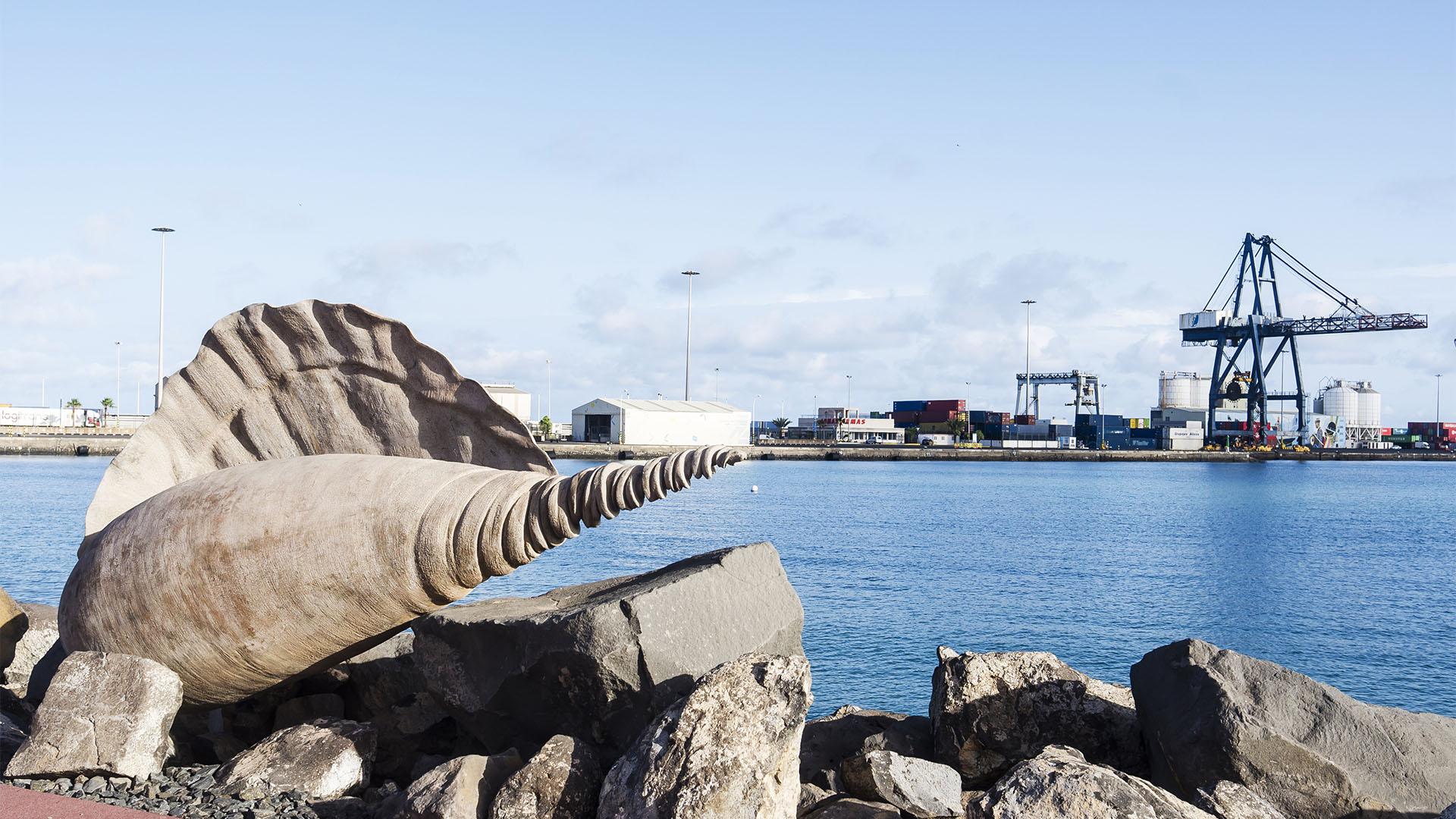 Skulpturen Muscheln Puerto del Rosario Fuerteventura