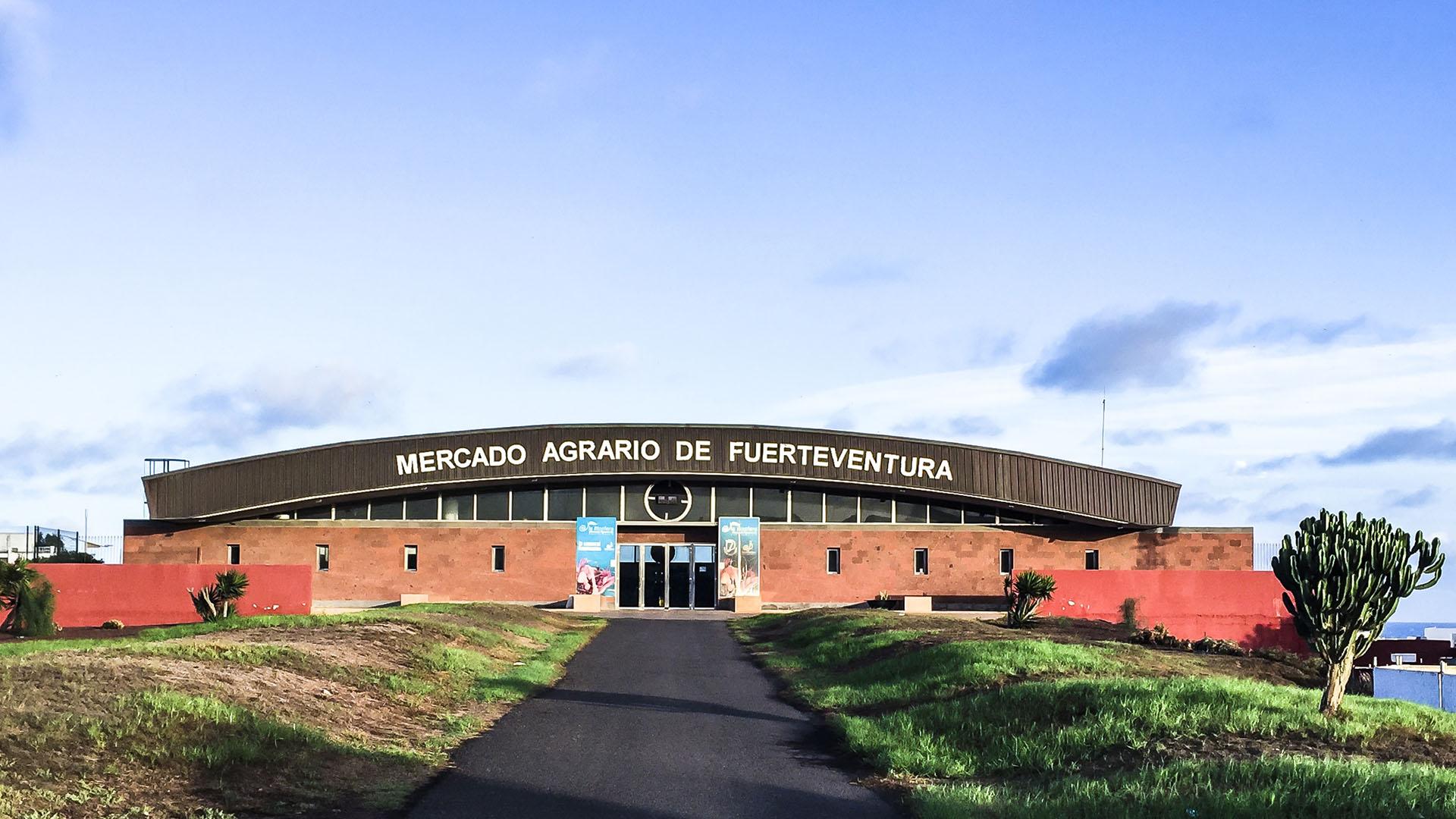 Der Mercado Agrario de Fuerteventura –der Biosphären Markt von Puerto del Rosario über dem Busterminal der Insel.