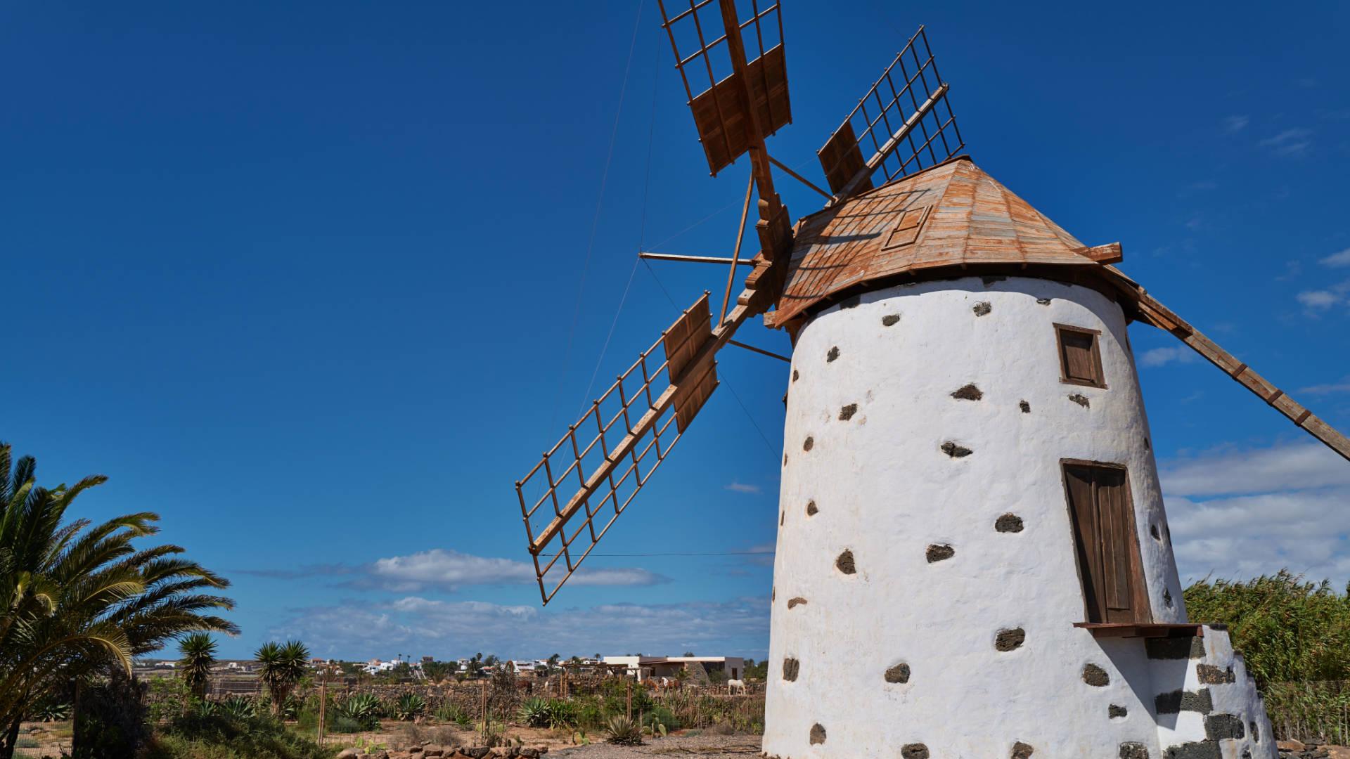 Die Windmühle von El Roque auf Fuerteventura.
