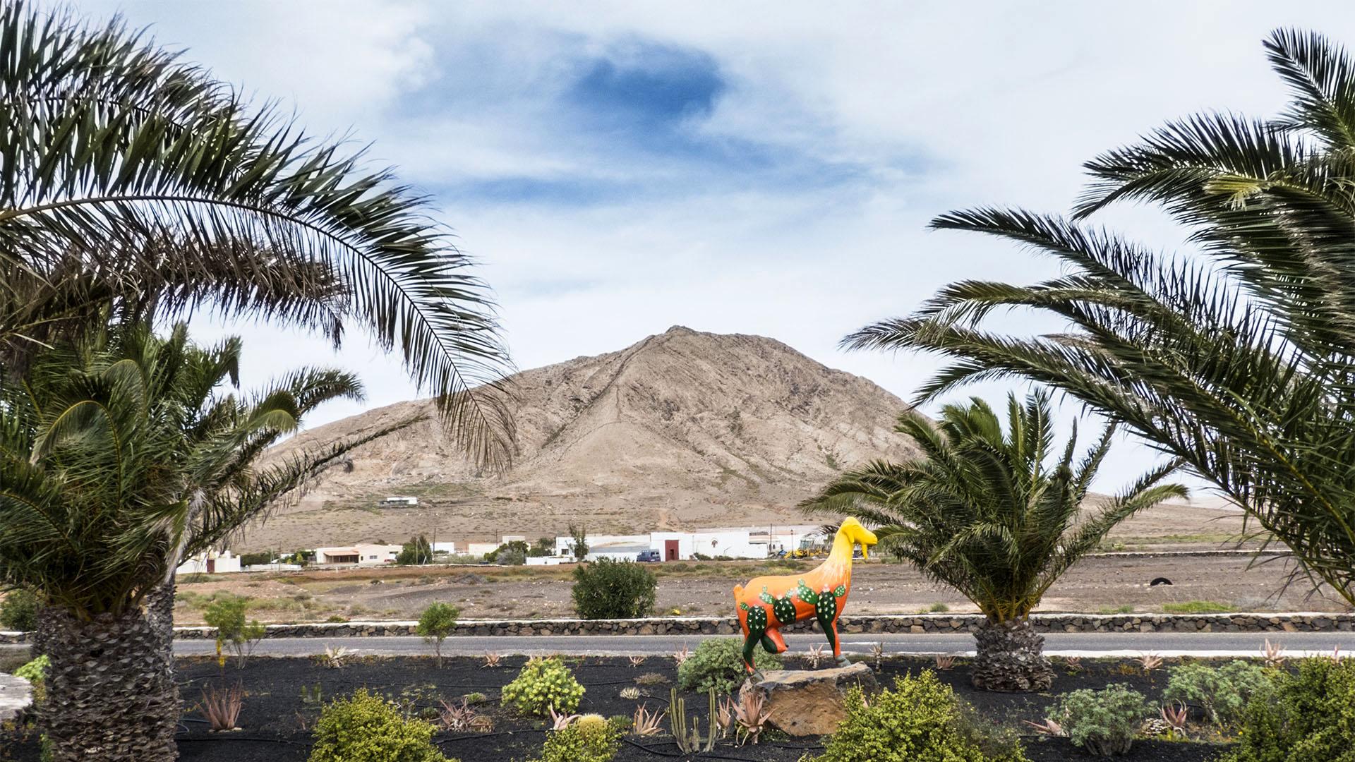 Städte und Ortschaften Fuerteventuras: Tindaya