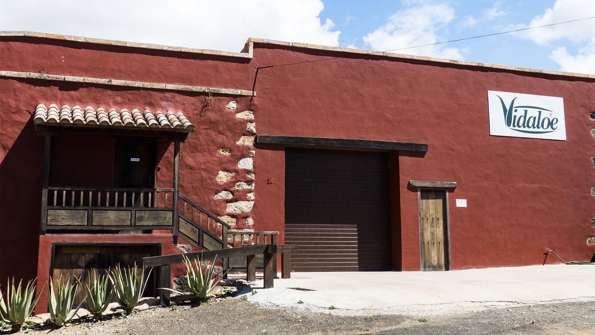 Der Ort Agua de Bueyes: Aloe Vera Produktion von Vidaloe.