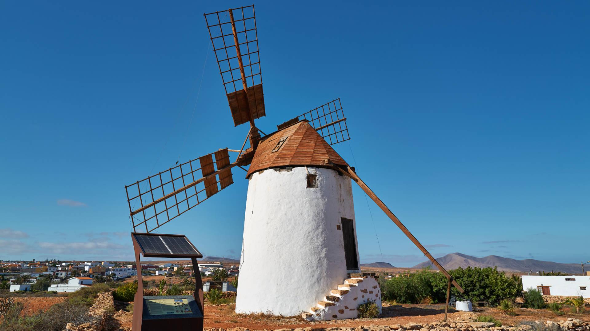 Molino de la Corte Tiscamanita Fuerteventura.