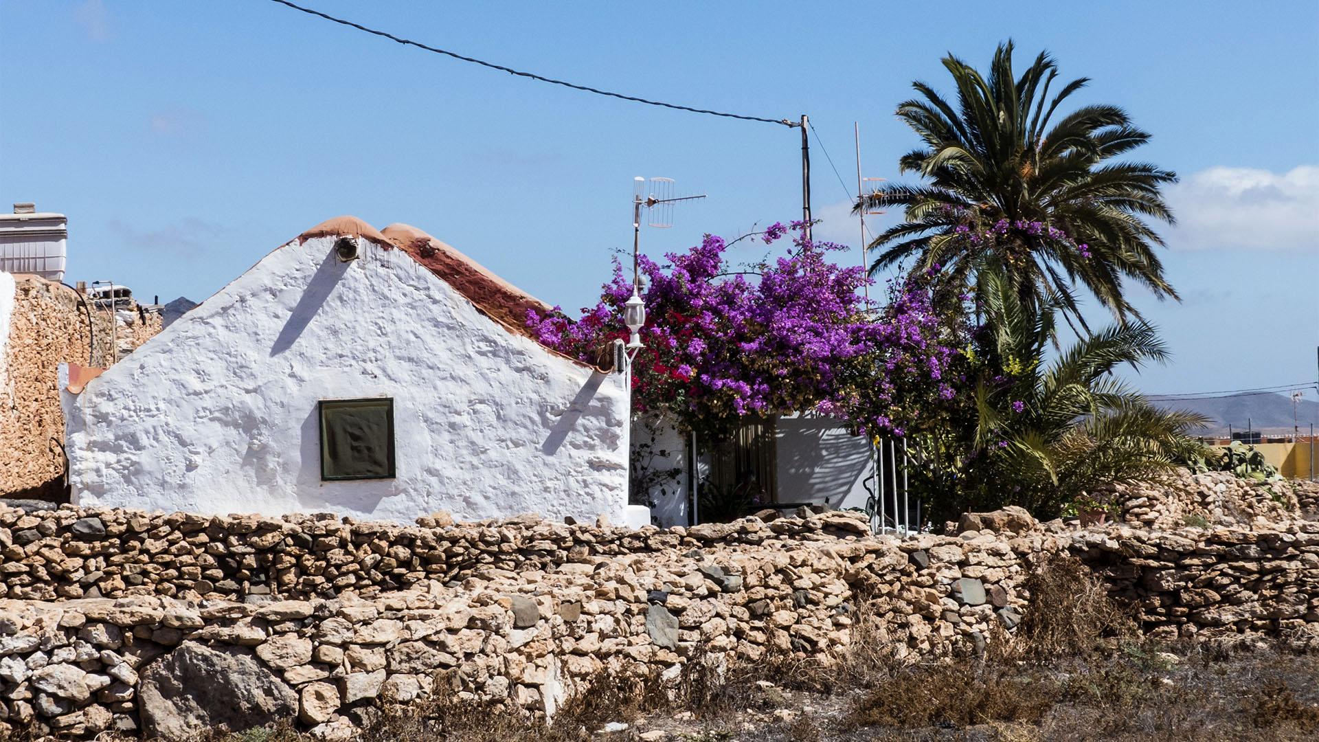 Der Ort Tiscamanita Fuerteventura.
