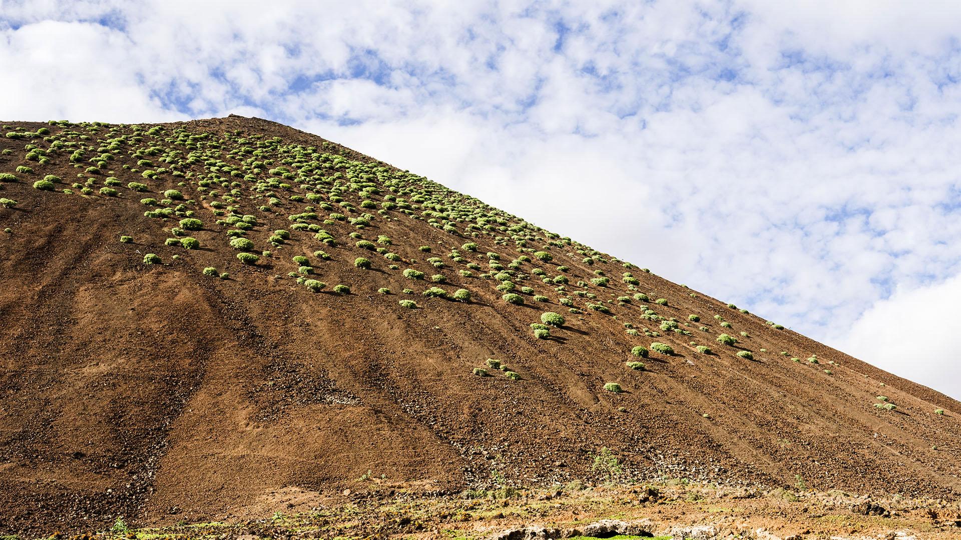 Caldera de Gairía Tiscamanita Fuerteventura.
