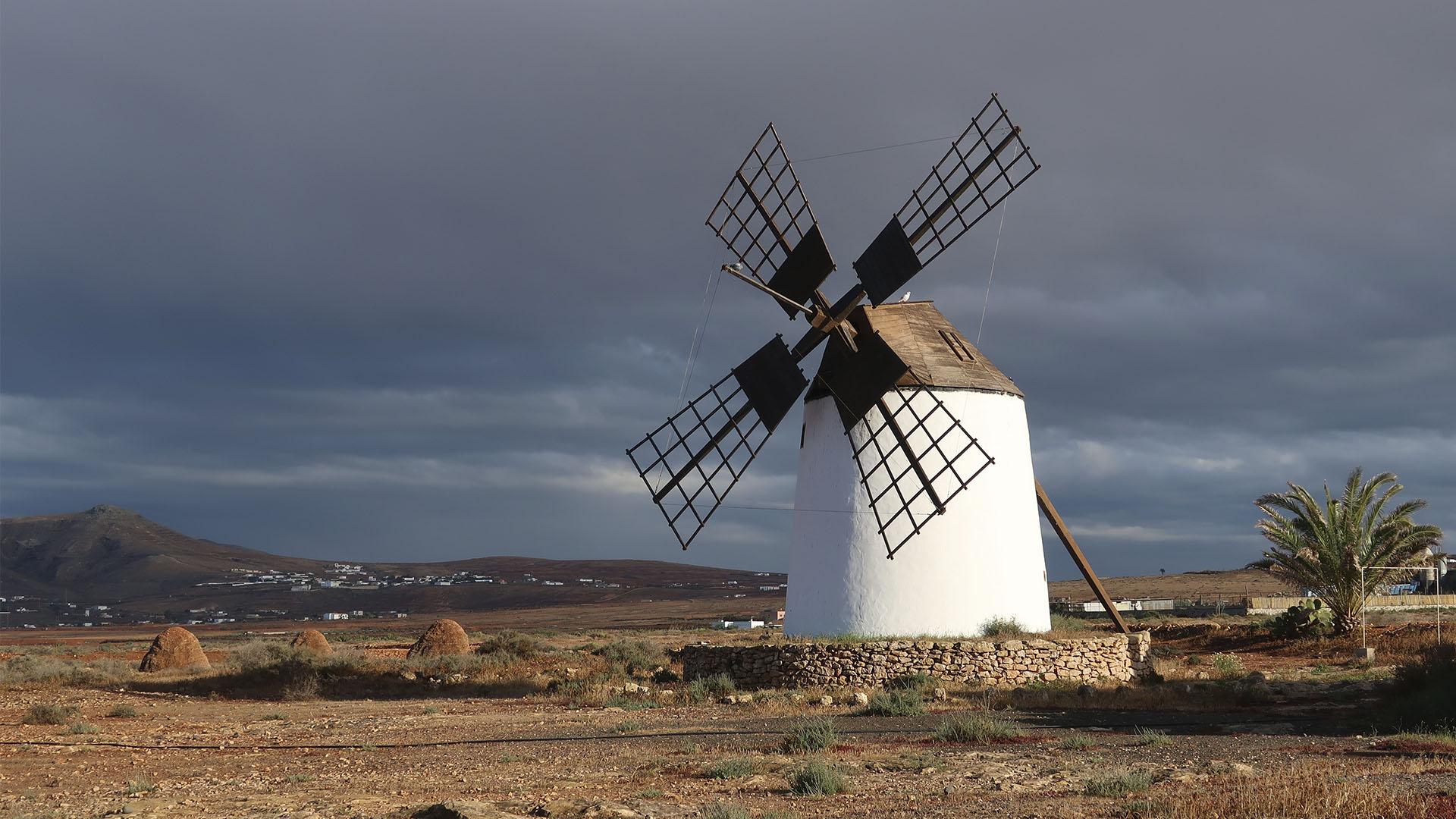 Windmühle Valle de Santa Inés Fuerteventura.