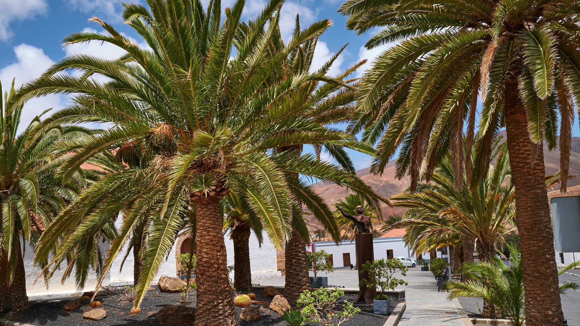 Der Ort Vega de Río Palmas Fuerteventura.