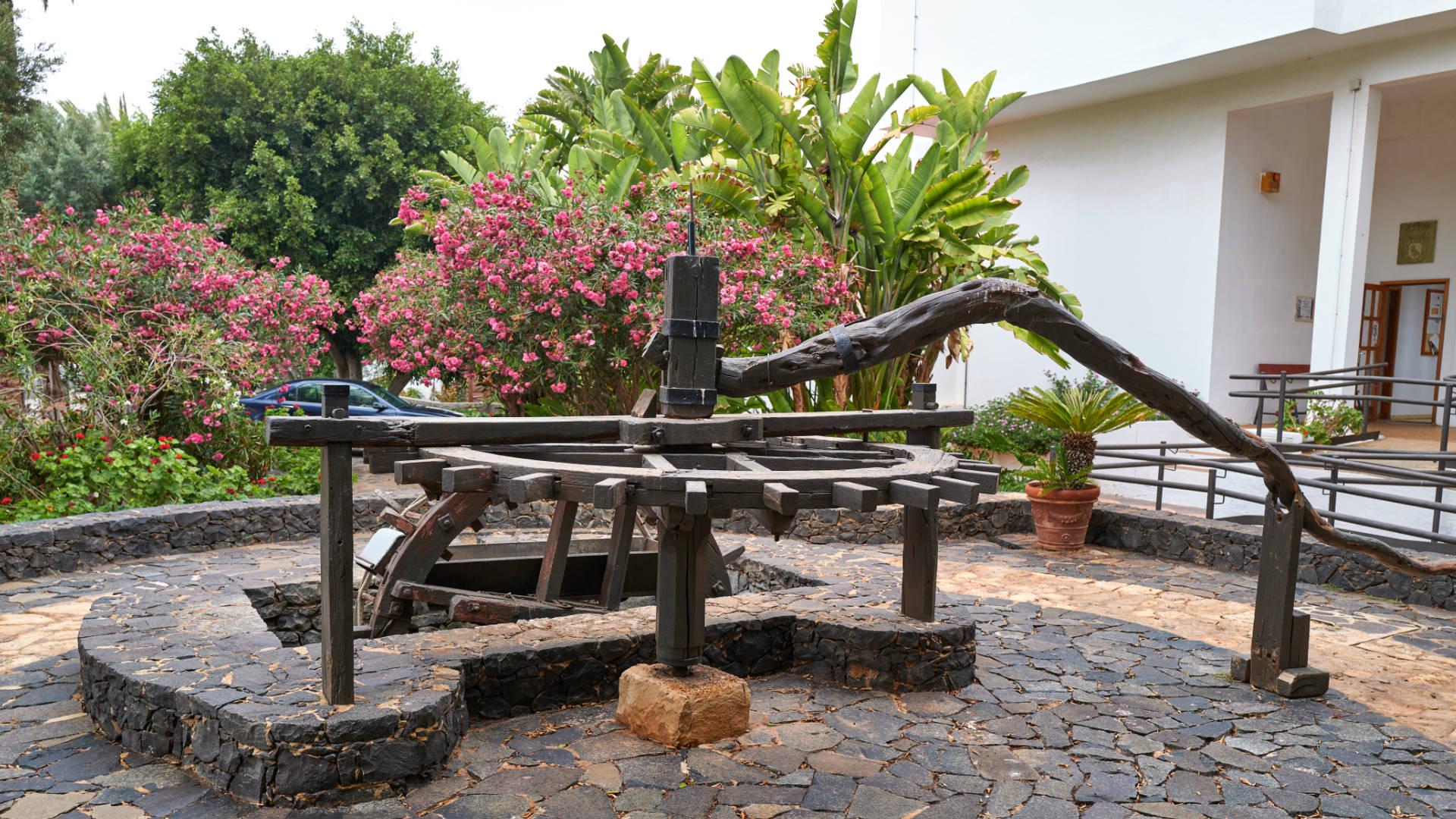 Der historische Brunnen im Casco des Ortes Pájara.