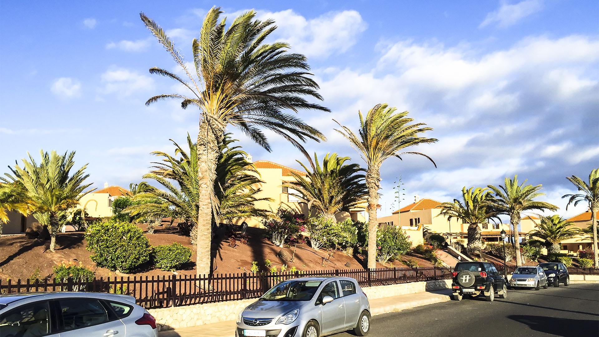 Städte und Ortschaften Fuerteventuras: Costa Calma