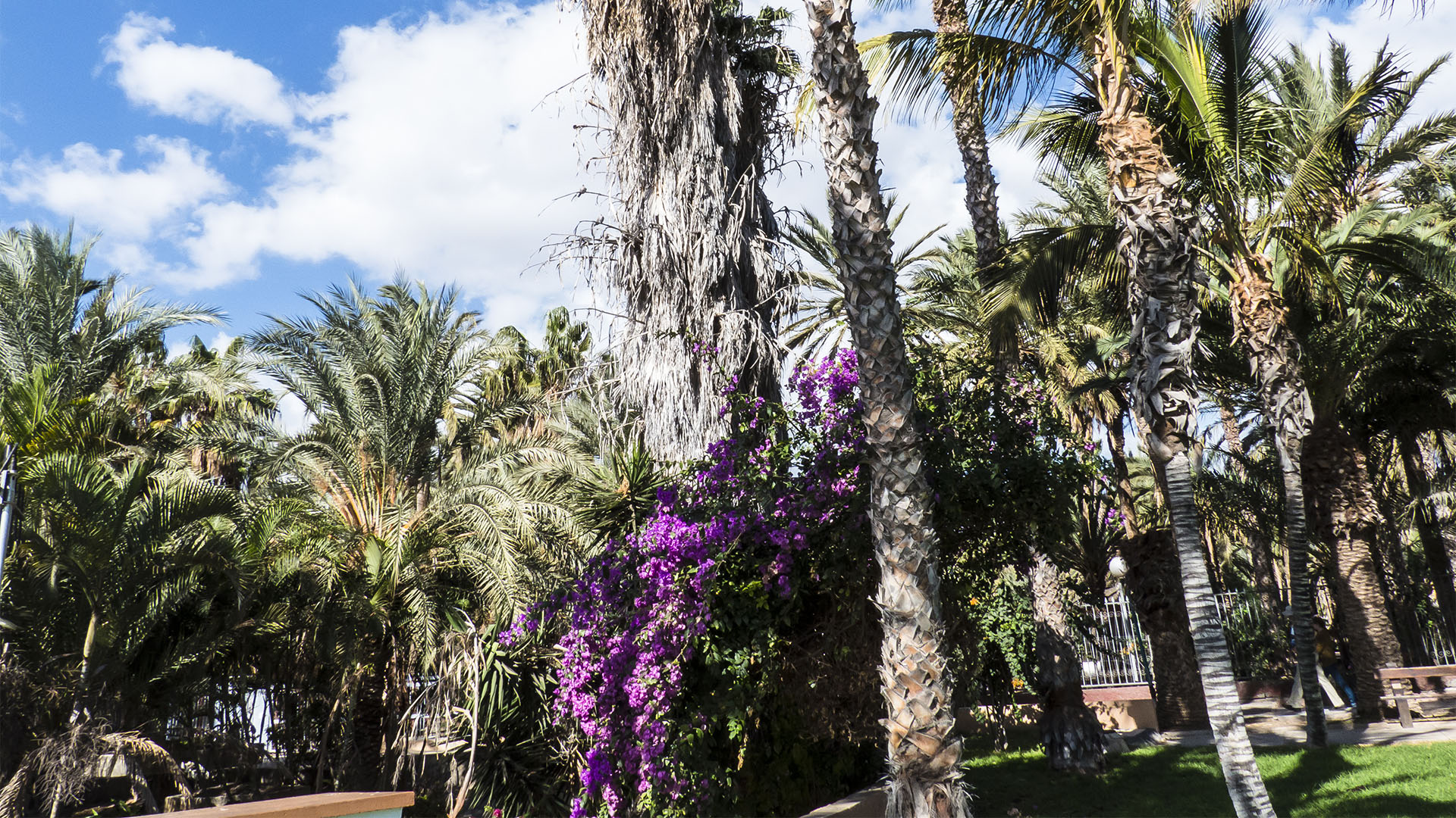 Städte und Ortschaften Fuerteventuras: Morro Jable