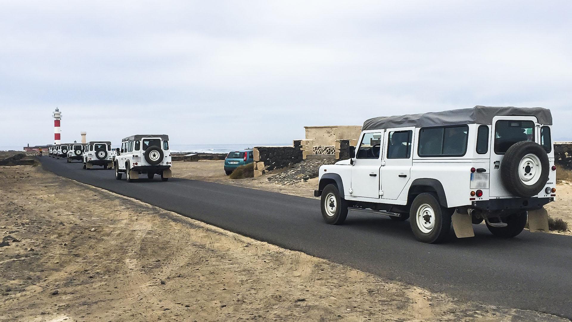 Geführte Exkursionen auf Fuerteventura.
