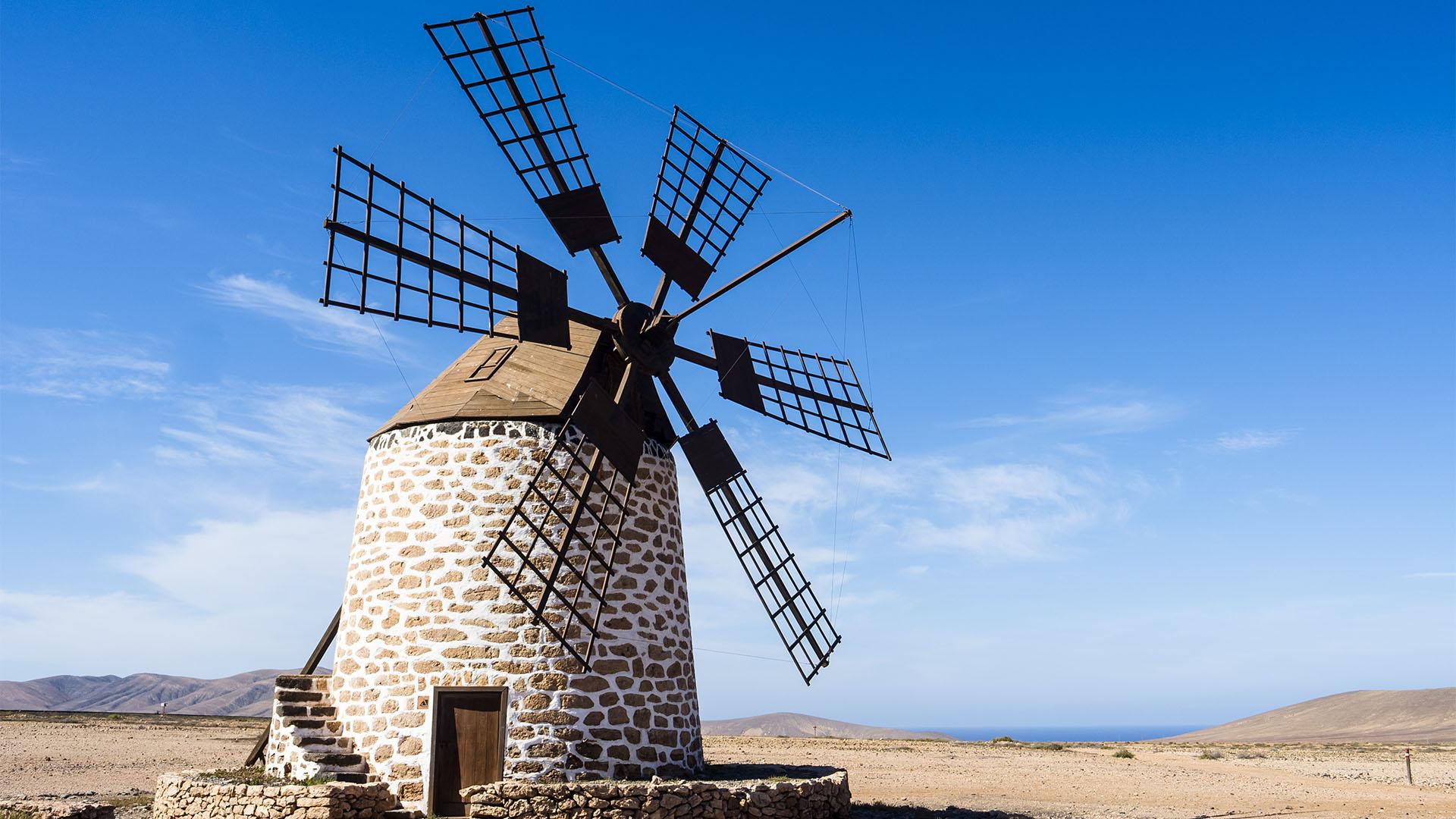 Fuerteventura Inselrundfahrt Norden –Windmühlen Molinos Tefía.