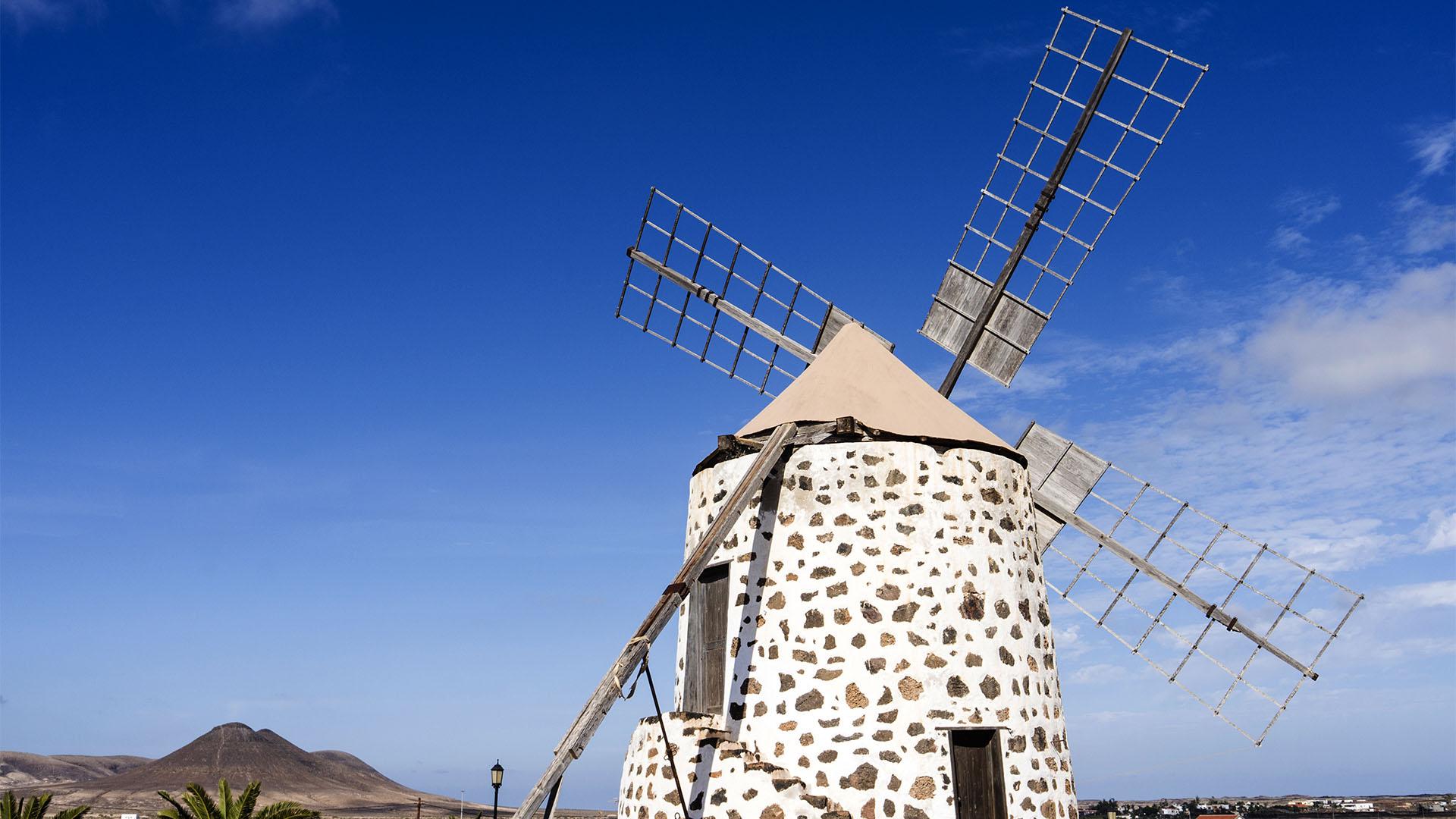 Fuerteventura Inselrundfahrt Norden – Lajares Windmühlen.