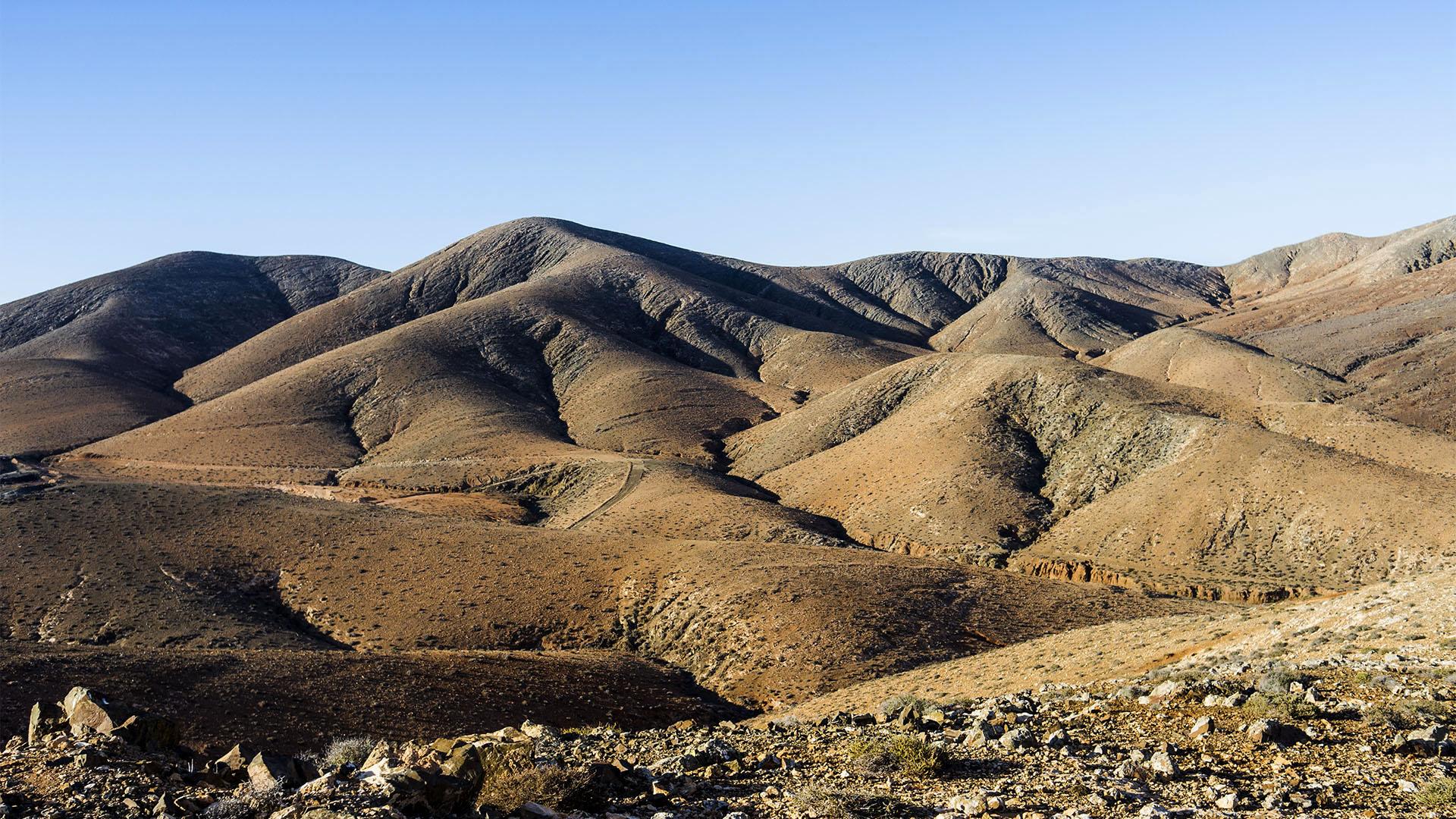 Fuerteventura Inselrundfahrt Zentralmassiv – El Cardón Degollada de las Bujas.