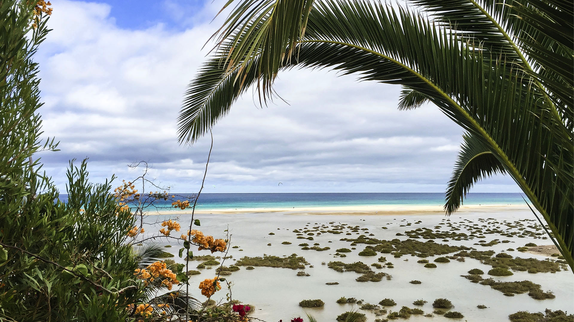 Fuerteventura Inselrundfahrt Südschleife – Costa Calma Ausgangspunkt.