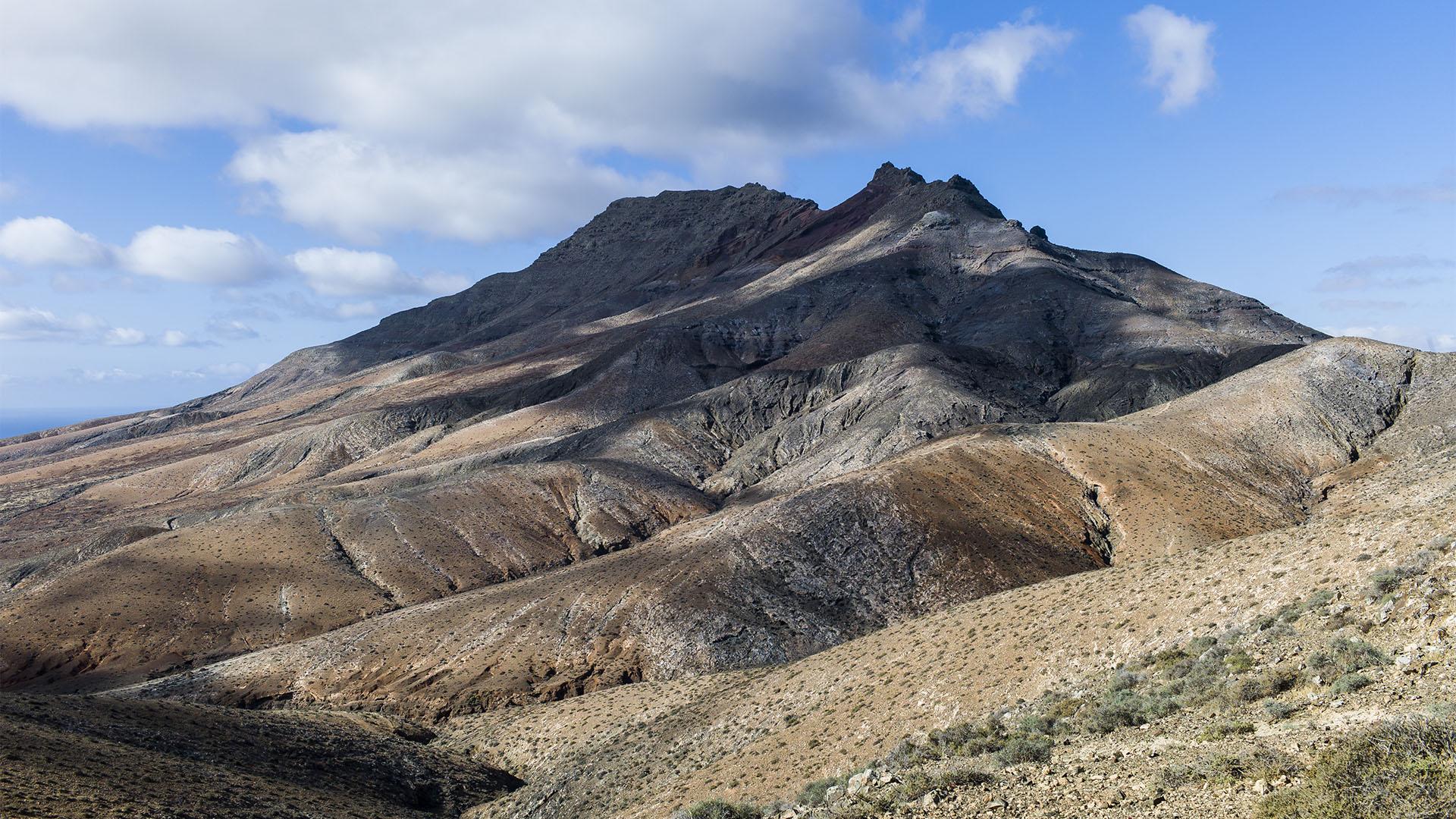 Fuerteventura Inselrundfahrt Südschleife –, Montaña Cardon.