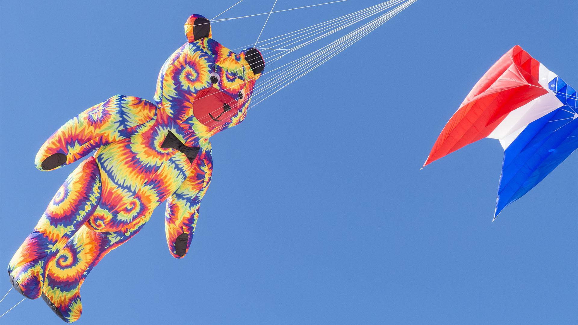 Kunst Kulturveranstaltungen Fuerteventura: Internationales Kite Festival Fuerteventura.