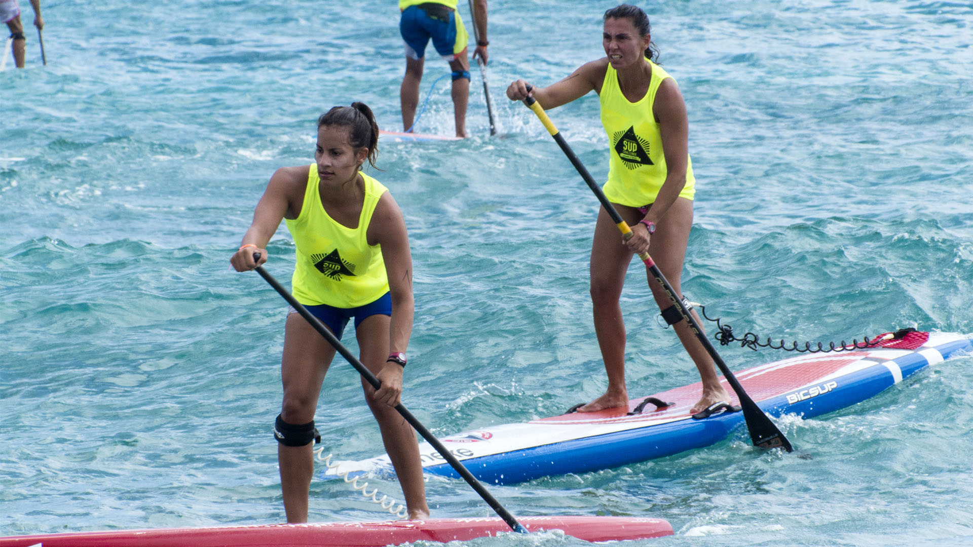 SUP Stand up Paddle auf Fuerteventura – das Hawaii Europas.