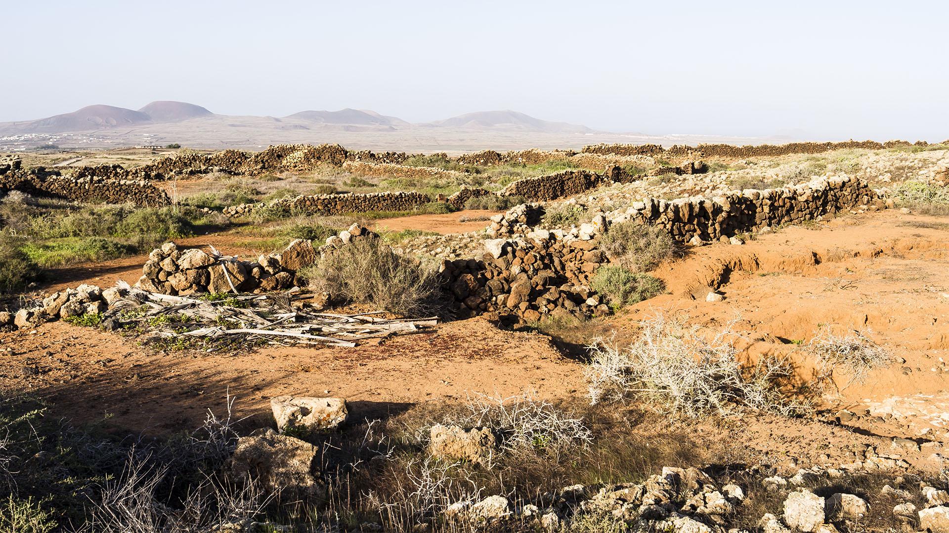 Wandern + Trekking auf Fuerteventura: Über die GR 131 von Villaverde nach Lajares.