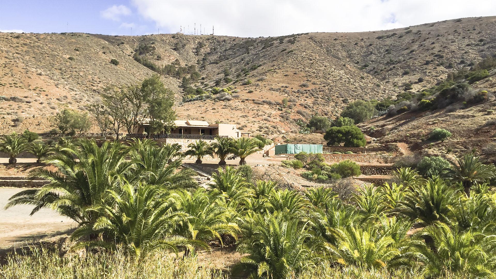 Wandern + Trekking auf Fuerteventura: Parra Medina einsam mit tollem Ausblick.