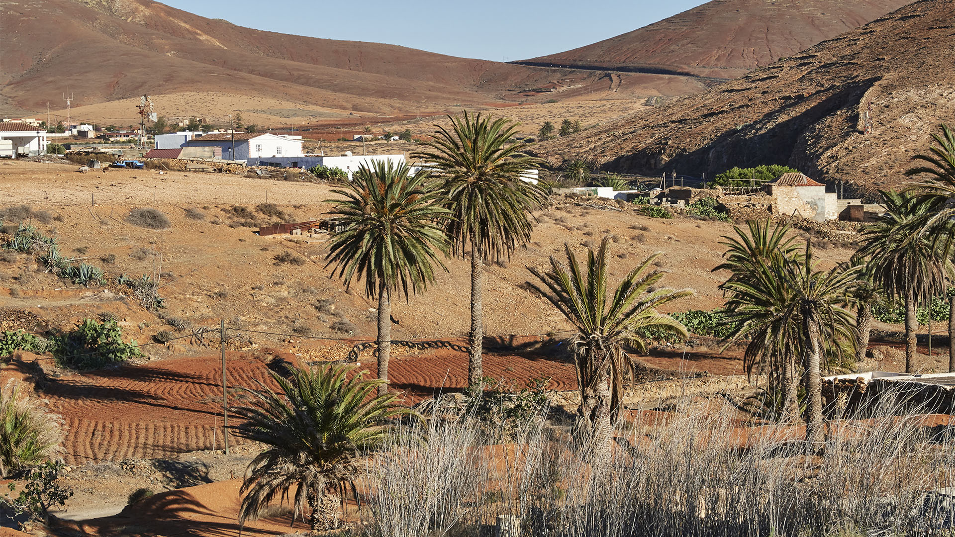 Wanderung von Toto über den Mirador los Granadillos auf den Morro de los Olivos und den Filo de Fénduca.