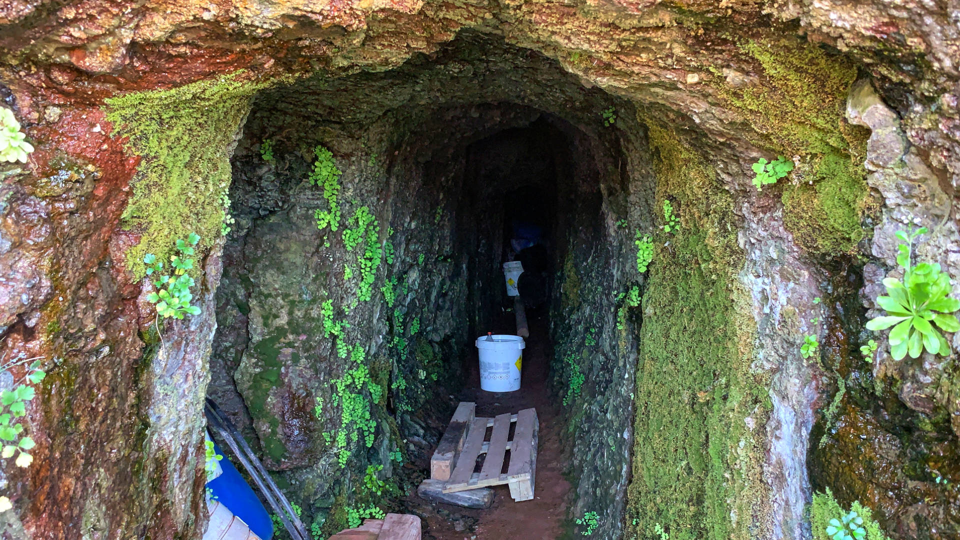 El Cardón – Wandern zur Ermita el Tanquito.