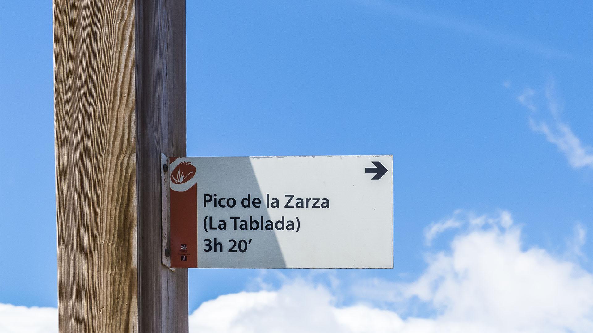 Wandern + Trekking auf Fuerteventura: Pico de Zarza –auf den höchsten Berg Fuerteventuras.