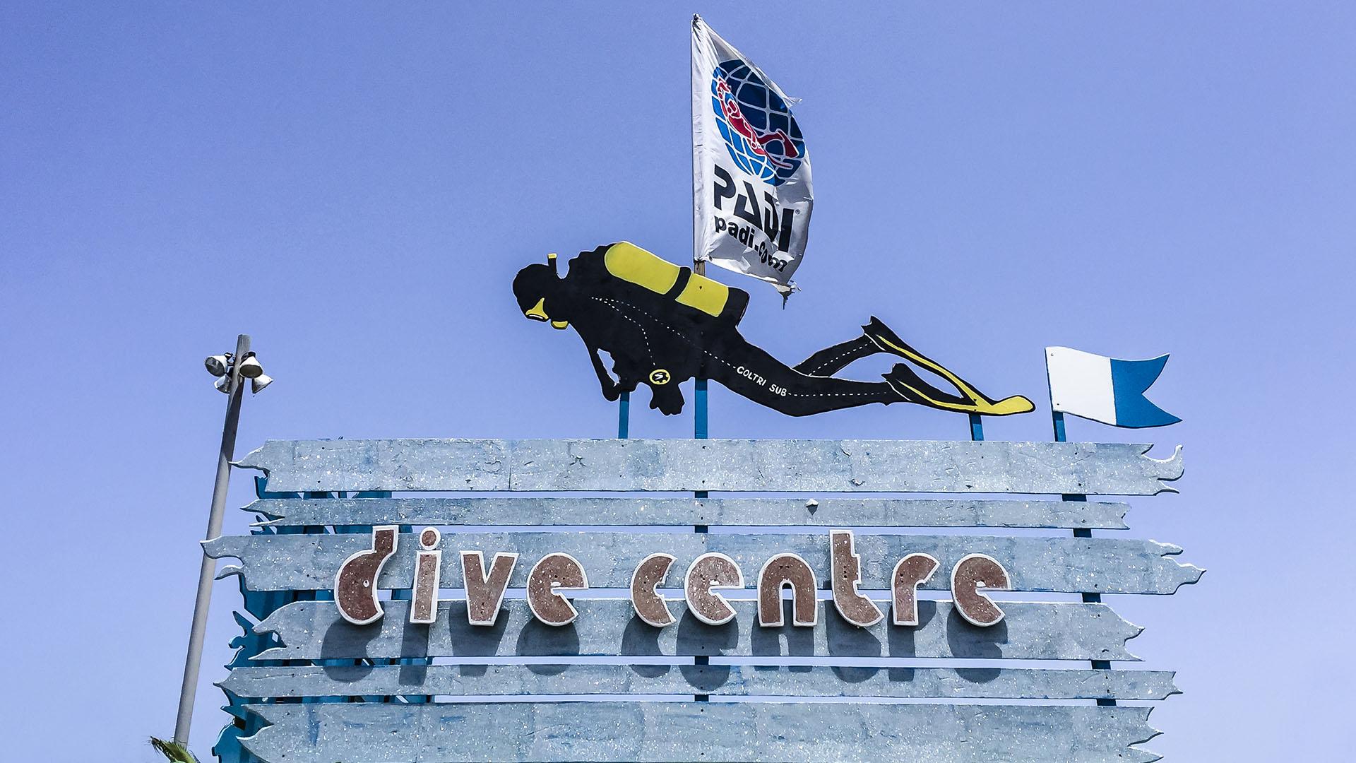 Tauchbasen und Camps Fuerteventura: Delphinus Diving School Corralejo.