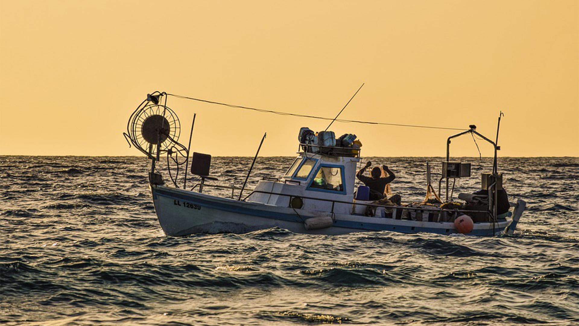 Aktivitäten Sport Fuerteventura – Fischen, Hochseefischen, Tiefseefischen