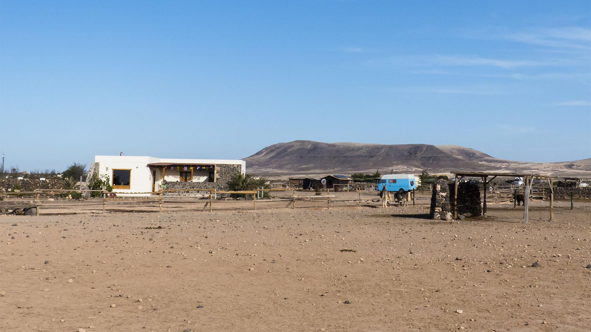 Reiten auf Fuerteventura.