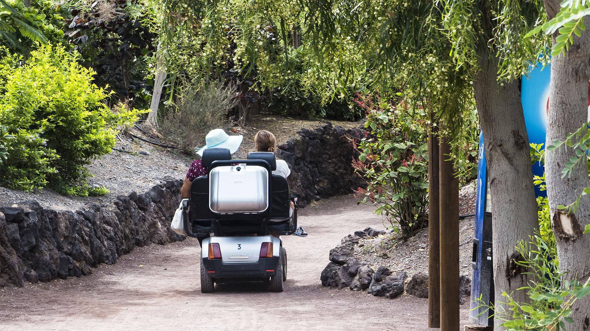Mobilität auf Fuerteventura mieten: Mietwagen, Motorras, Räder, Gehilfen, Scooter und mehr.