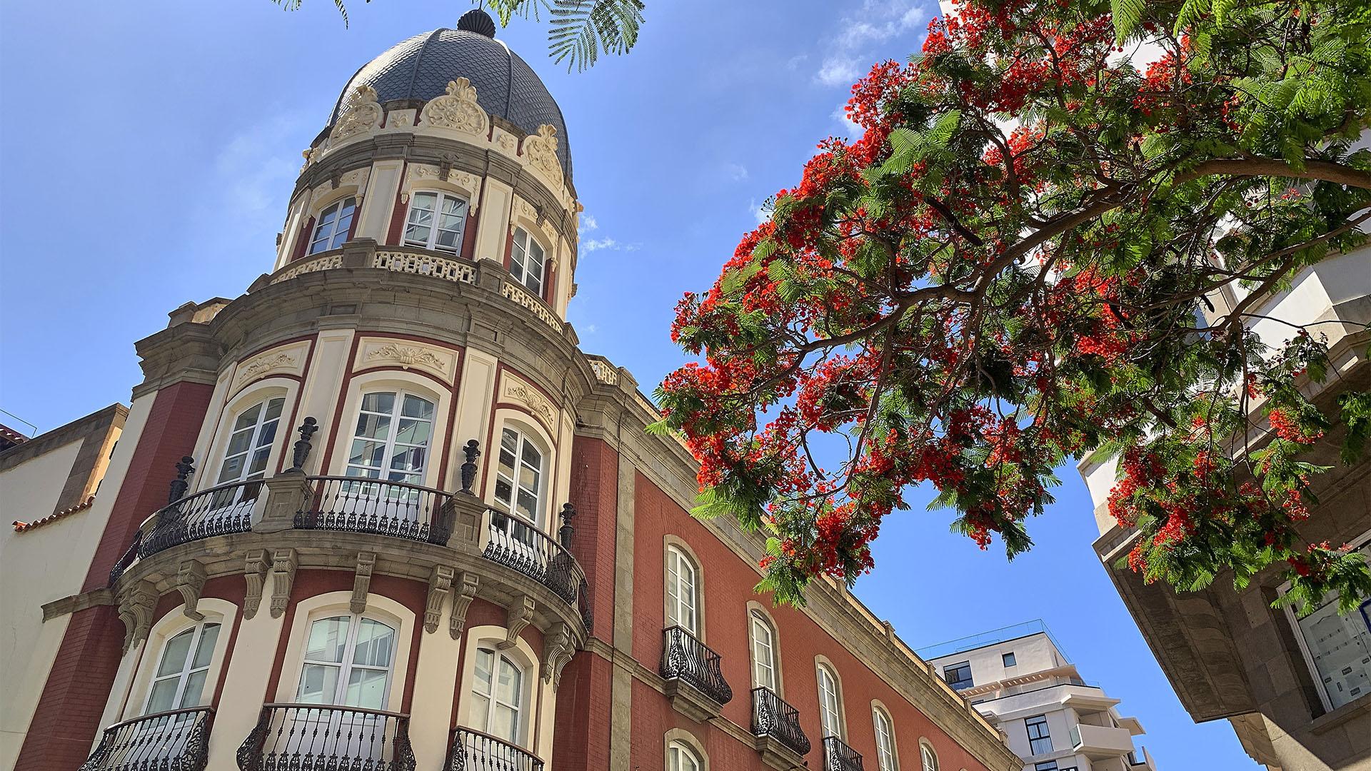 Die Altstadt von Santa Cruz de Tenerife.
